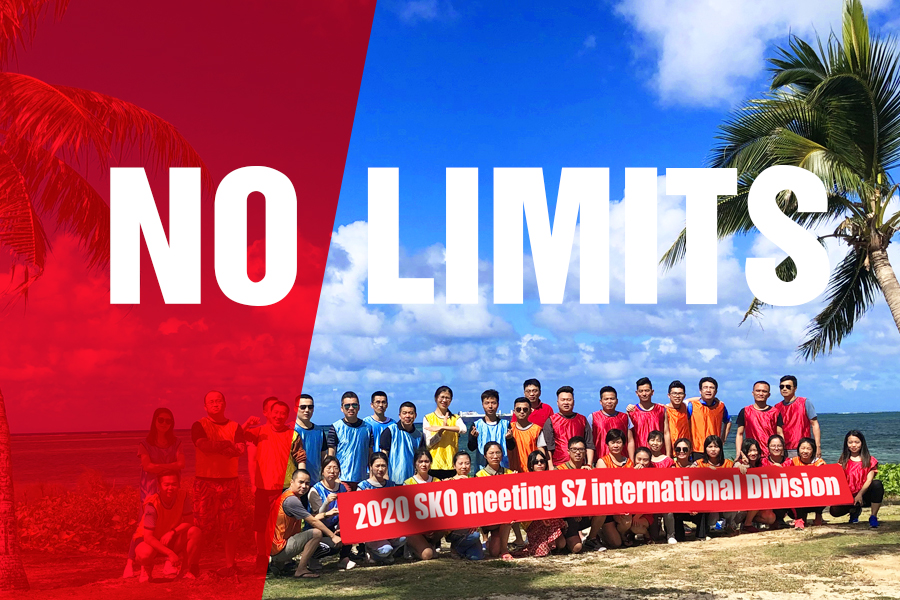 "Leyard SZ international Division has ""No Limits"" --2020 SKO meeting"